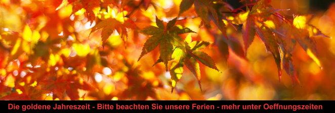 Herbstbanner